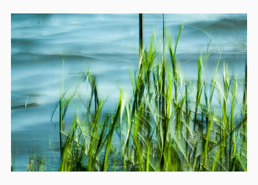 still Foto © Vitoscha Königs