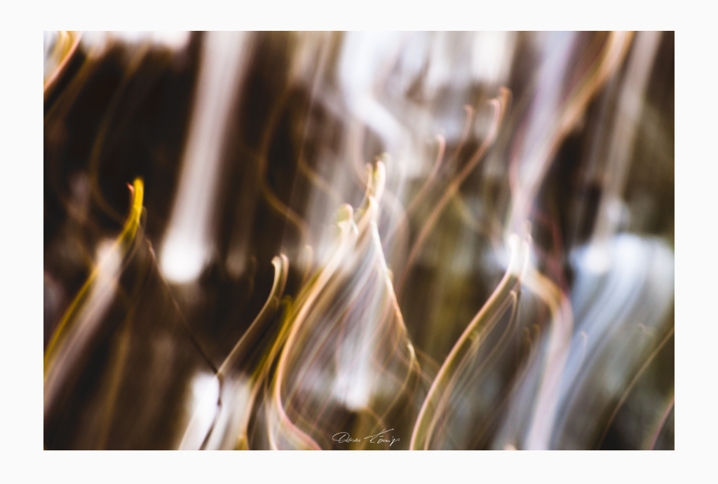 Lampau Pren No.2353 Foto © Vitoscha Königs